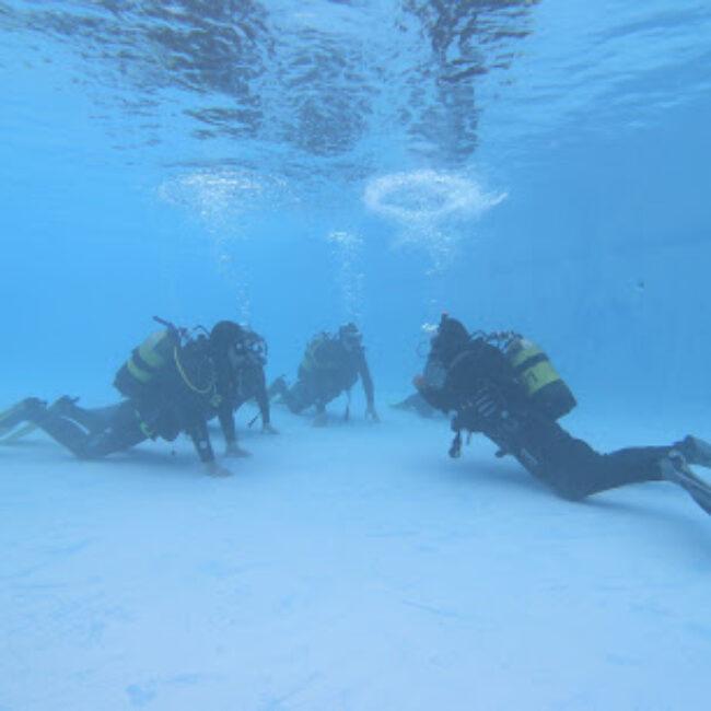Azoresdiving/Açordiving Ssi/Mares Dive Center