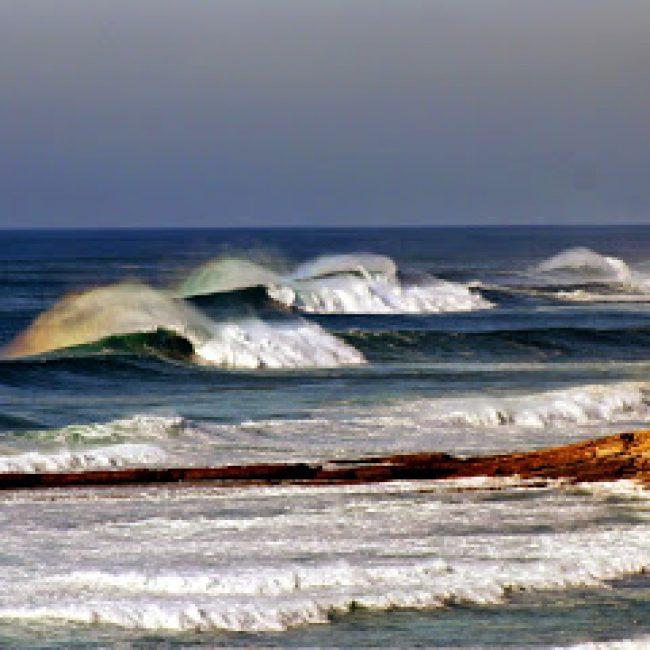 ERICEIRA BLUE OCEAN SURF SCHOOL & RENTALS