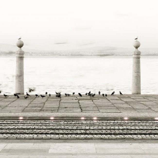 PICOTO PARK