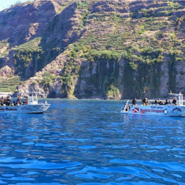 SEA COLORS AZORES