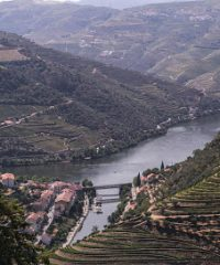 MANDALA TRAVEL PORTUGAL – TOURS AND TRANSFERS – PORTO