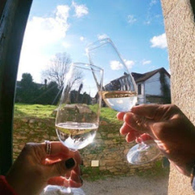 PORTUGAL FARM EXPERIENCES & TOURS