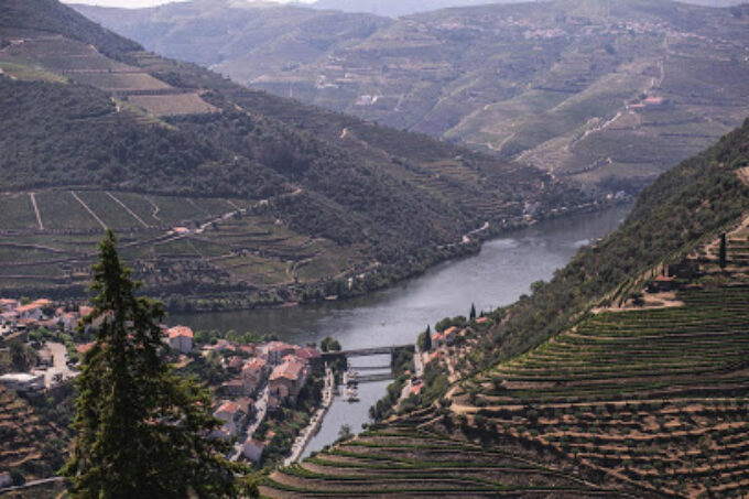 Mandala Travel Portugal - Tours And Transfers - Porto