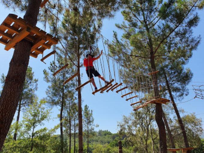 Arborismo - Expertree Park